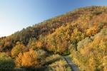 autunno dal BB